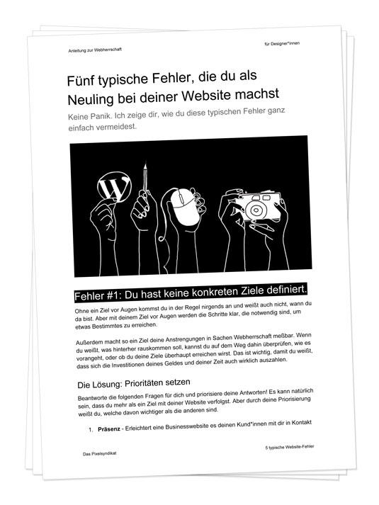 """Vorschau PDF Download """"Fünf Fehler im Web"""""""